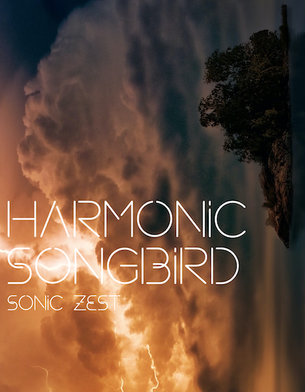 songbird - Sonic Zest - Top 19 Best Kontakt Samples Libraries 2021